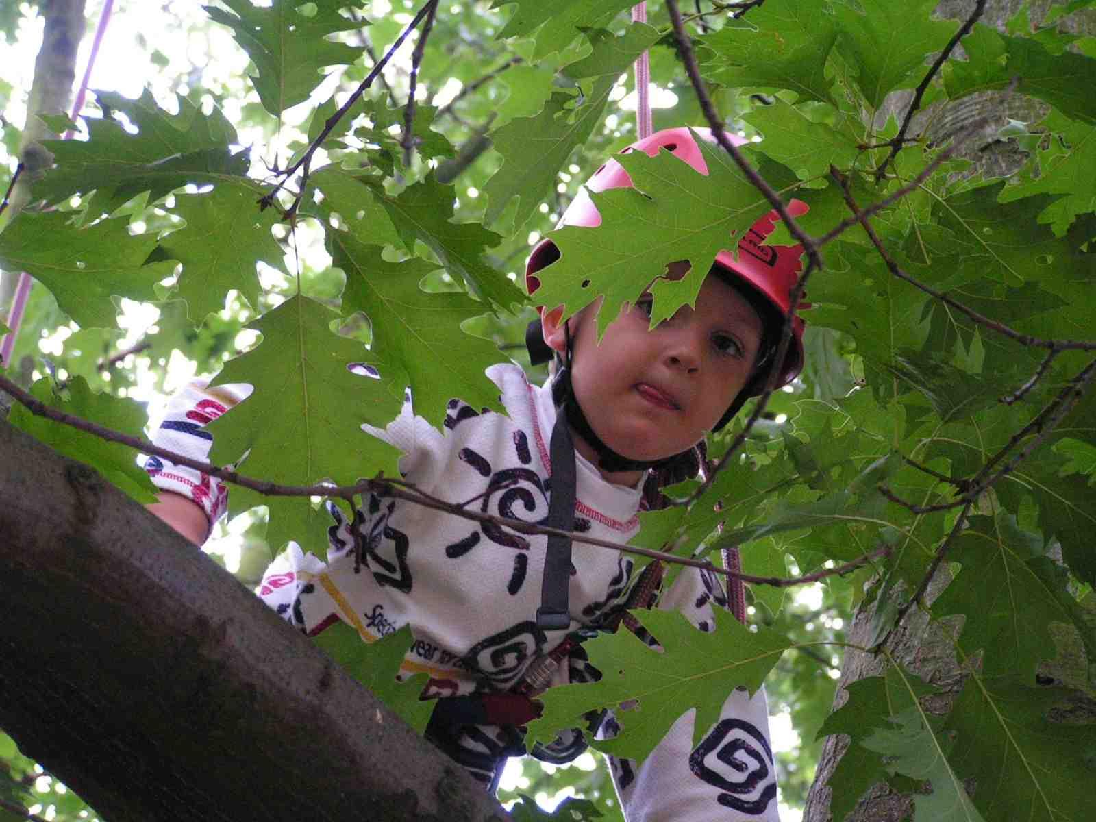 Klettergurt Mit Helm : Austrialpin helm ut kletterhelm green campz
